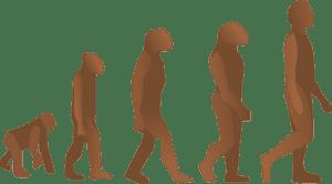 Al'Origin Retour aux sources, Al'Origin, les indices glycémiques .. Evolution de l'homme