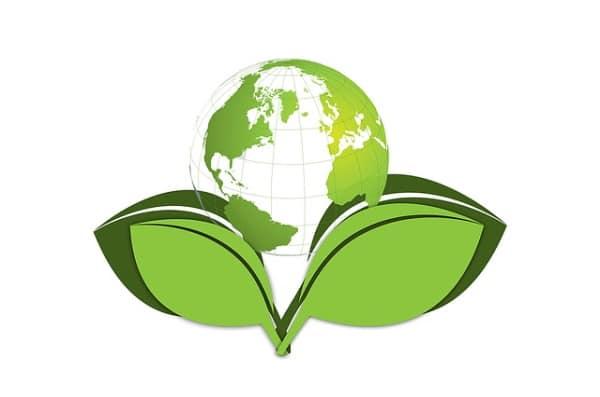 Impact écologique sur le Sucre de fleur de coco bio non raffiné VENDU sur Al'Origin.fr