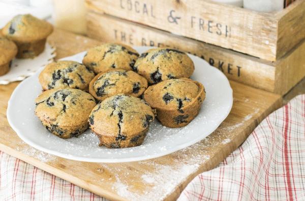 Muffin Myrtille -Farine Fiberpasta IG 29 - Vendu chez al-origin.fr
